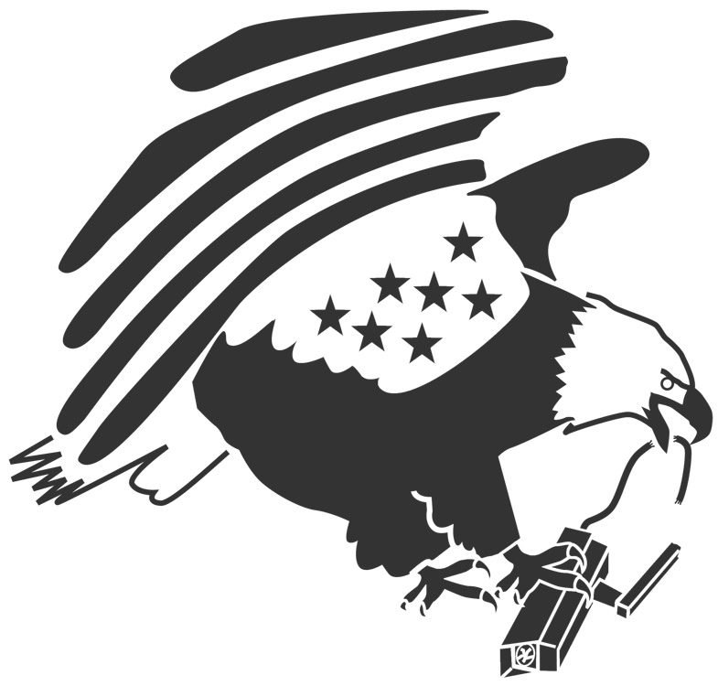 Privacy is an American value   Eagle Head Stencil
